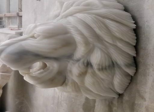 Aslan başı Aslan ağzı (lion)-206